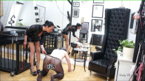 Sklaven-Neuling geformt